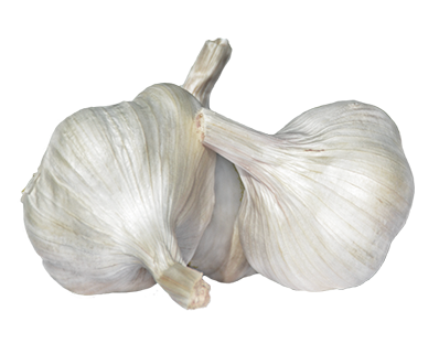 TODA_Herbal_garlic